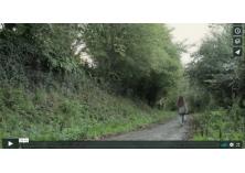 chemin dans la forêt avec une fille qui marche au loin